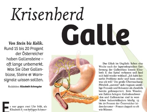 Galle Stein Bis Kolik Wien