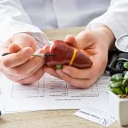 lebererkrankung / hepatologie wien